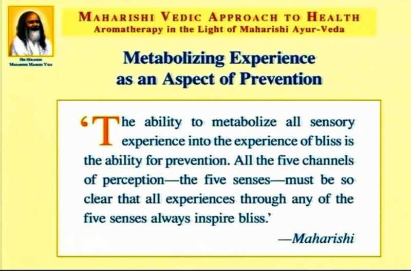 metabolizingexperience.jpg